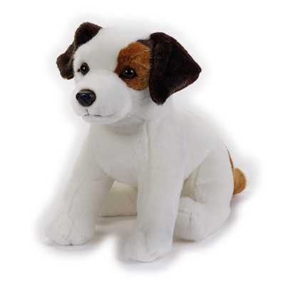 Catel JACK RUSSEL 26 cm, National Geographic